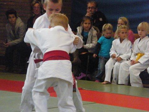 judo 024